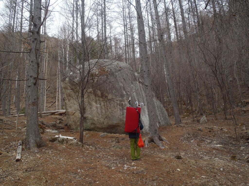 分岐岩。MNPのラインを確認してきました。
